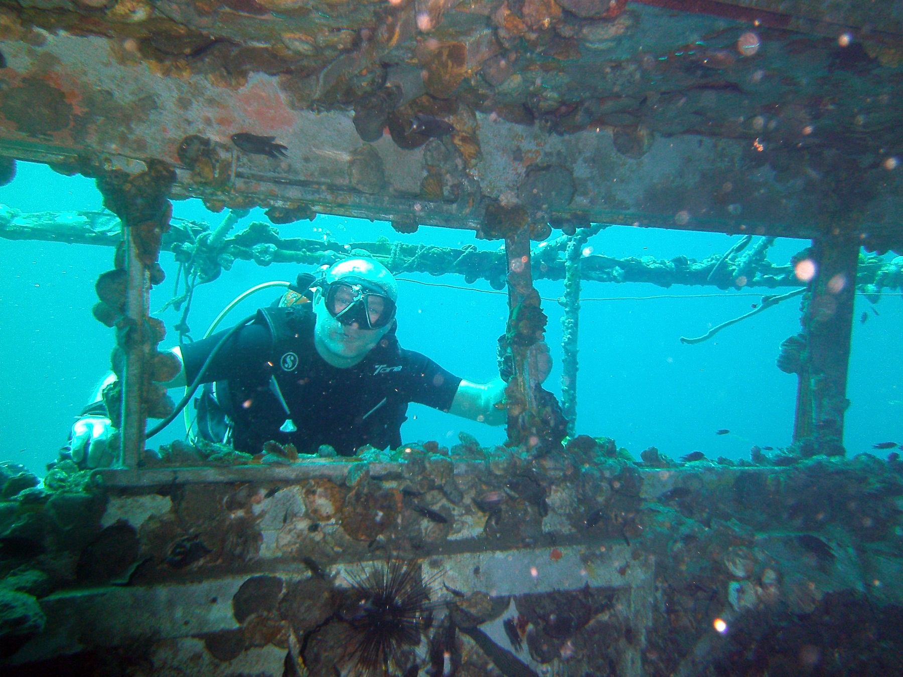 instructor-patrick-on-Wreck-HTMS-Chang